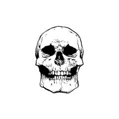 black and white skull tattoo illustration