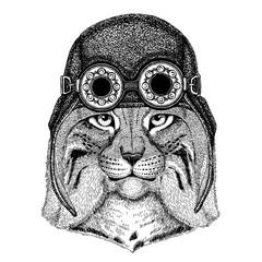 Cute animal wearing motorcycle, aviator helmet Wild cat Lynx Bobcat Trot Hand drawn image for tattoo, emblem, badge, logo, patch