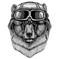 Animal wearing aviator helmet with glasses. Vector picture. Black bear Hand drawn illustration for tattoo, t-shirt, emblem, badge, logo, patch