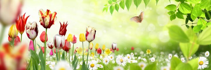 Landschaft mit Tulpen und Schmetterling