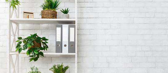 White bookshelf with plants and folders over wall - fototapety na wymiar