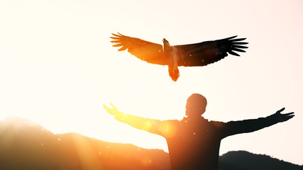 Photo sur Plexiglas Aigle Man raise hand up on top of mountain and sunset sky with eagle bird fly abstract background.