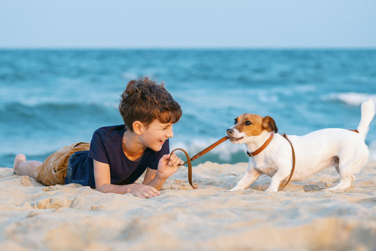 Happy boy hugging his dog breed Jack Russell terrier at the seashore against a blue sky close up at sunset. Best friends rest and have fun on vacation, play in the sand against the sea summer
