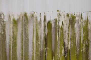 green strokes on white wooden planks wall