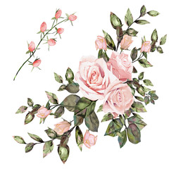 watercolor drawing of twig with leaves and flowers. Botanical illustration. Arrangement of pink roses and wild flowers. Isolated on white background.
