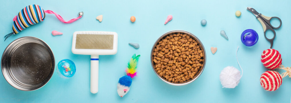 Pets and cute animals, pets, cute cats, food and accessories for cat's life, Flat lay