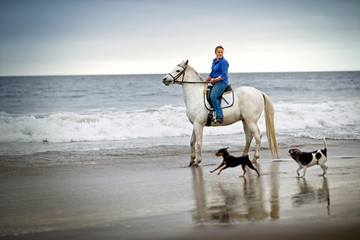 Mid-adult woman riding a horse with two dogs running along a beach.