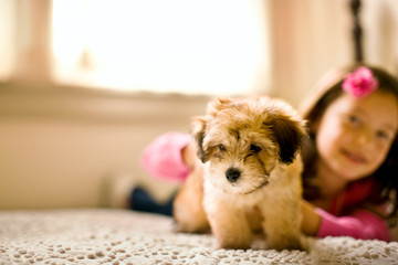 Young girl lying front down on a carpeted floor holds onto a puppy as it tries to walk away as she poses for a portrait.