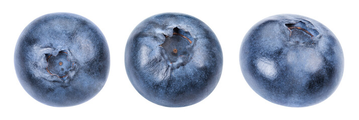 Blueberry isolated Clipping Path Fototapete