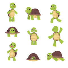Set of cute green turtles with brown shell in various poses isolated on white background