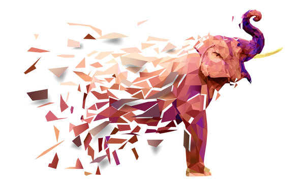 Elephant Low poly multicolored,Geometric pattern design, eps10 vector