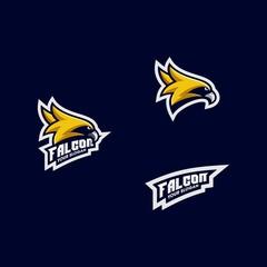 Sport Eagle tournament Design illustration vector template