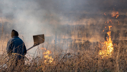 Bursdon Moor, Hartland,North Devon, England, UK. February 2019. Man using a rubber fire beater tool at the annual  burning of gorse and scrub