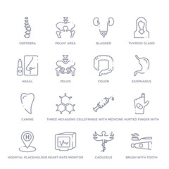 set of 16 thin linear icons such as brush with tooth paste, caduceus, heart rate monitor, hospital placeholder, hurted finger with bandage, syringe with medicine, three hexagons cell from medical