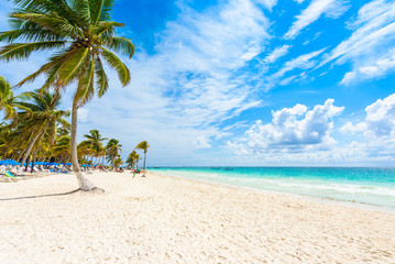 Paradise Beach (also known for Playa Paraiso) at sunny summer day - beautiful and tropical caribbean coast at Tulum in Quintana Roo, Riviera Maya, Cancun,  Mexico Wall mural