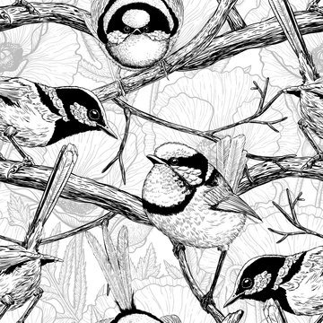Seamless pattern made of hand drawn fairy wrens. Element for design.