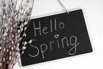 a photo on a white background and willow branches. Greeting banner on the topic hello spring. Collage from photo of willow branches, inscription hello spring and flowers drawn in the editor personally