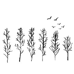 Naked trees silhouettes with flock of birds. Hand drawn set. Vector illustration.
