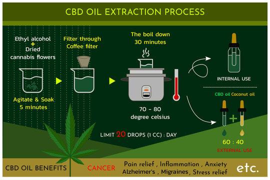 Cannabis oil (CBD oil) extraction process