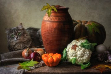 Autumn still life with vegetables and curious kitty