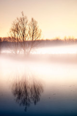 Keuken foto achterwand Beige Old river arm landscape in Hamme