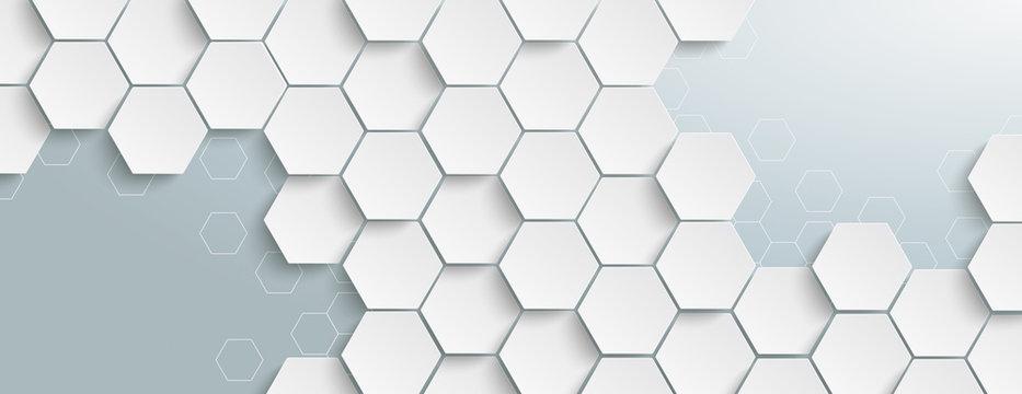 White Hexagon Structure Grey Edges Header