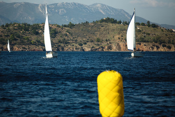 Wall Mural - Sailing boats participate in sail yacht regatta in Aegean Sea - Greece.