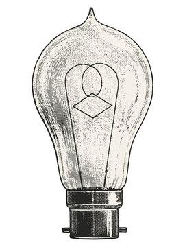 Pear Light bulb vector illustration