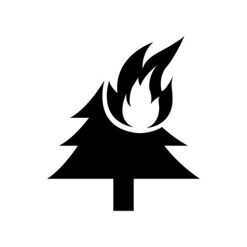 forest fire icon isolated illustration on white background