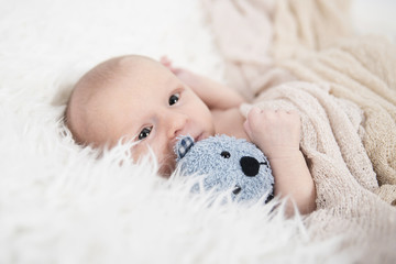 Neugeborenes schläft friedlich mit Teddy