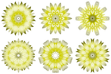 Set of Vector Illustration. Modern Decorative Floral Mandala. Hand Drawn Background. Islam, Arabic, Indian, Ottoman Motifs. Green olive color