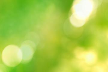 Vivid green and yellow blurred vegetal background, bokeh lights
