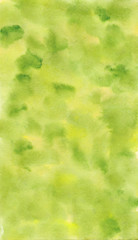 Watercolor light green background with texture