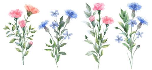 Watercolor flowers. Botanical illustrations. Floral set.