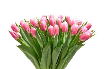 Obraz Bukiet tulipanów na białym tle - fototapety do salonu