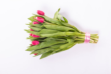 Bunch of pink tied tulips isolated on white background