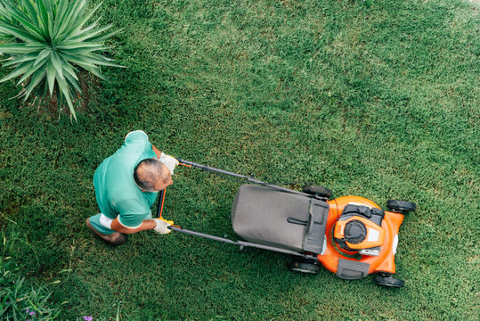 Lawnmower mows the green grass top view. Garden care.
