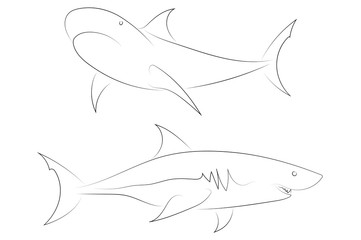Black line sharks on white background.