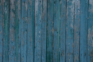 gray blue wooden texture of thin  frayed fence boards