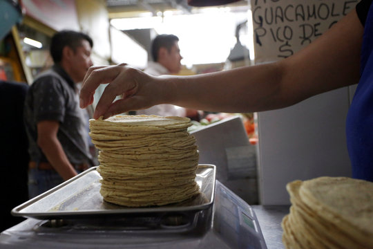 An employee weighs a stack of freshly made corn tortillas at a tortilla factory in Mexico City