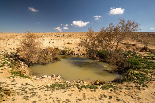 An Ancient Nabataean Water Cistern