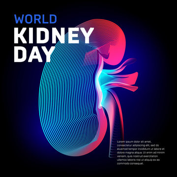 World kidney day health vector bean human organ silhouette contour in abstract 3d geometry lines texture and outline gradient waves vintage modern trendy graphic design illustration on dark background