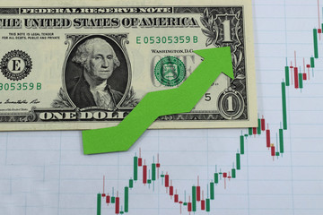 graph of the growth of the dollar in price, the dollar grows in price.