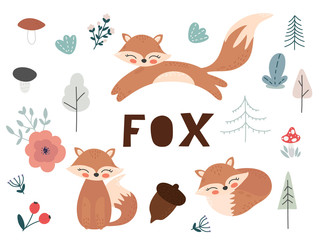 Cute cartoon fox. Fox characters set. Foxes, flowers and leaves vector illustration.