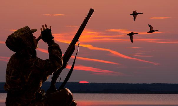 hunter lures ducks at dawn