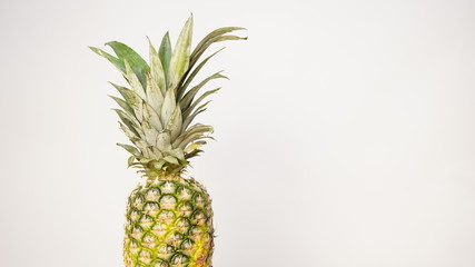 Pineapple isolated on white background. Space for text