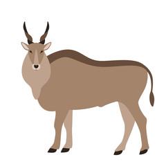 antelope, vector illustration, flat style,