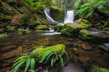 Horeshoe Falls Tasmania Australia