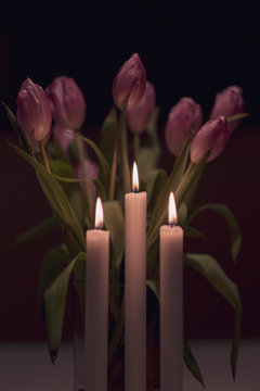 Tulips by candle light