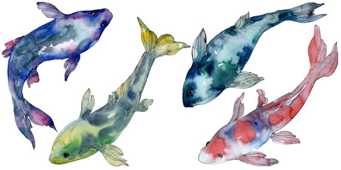 Spotted aquatic underwater colorful tropical fish set. Watercolor background set. Isolated fish illustration element.
